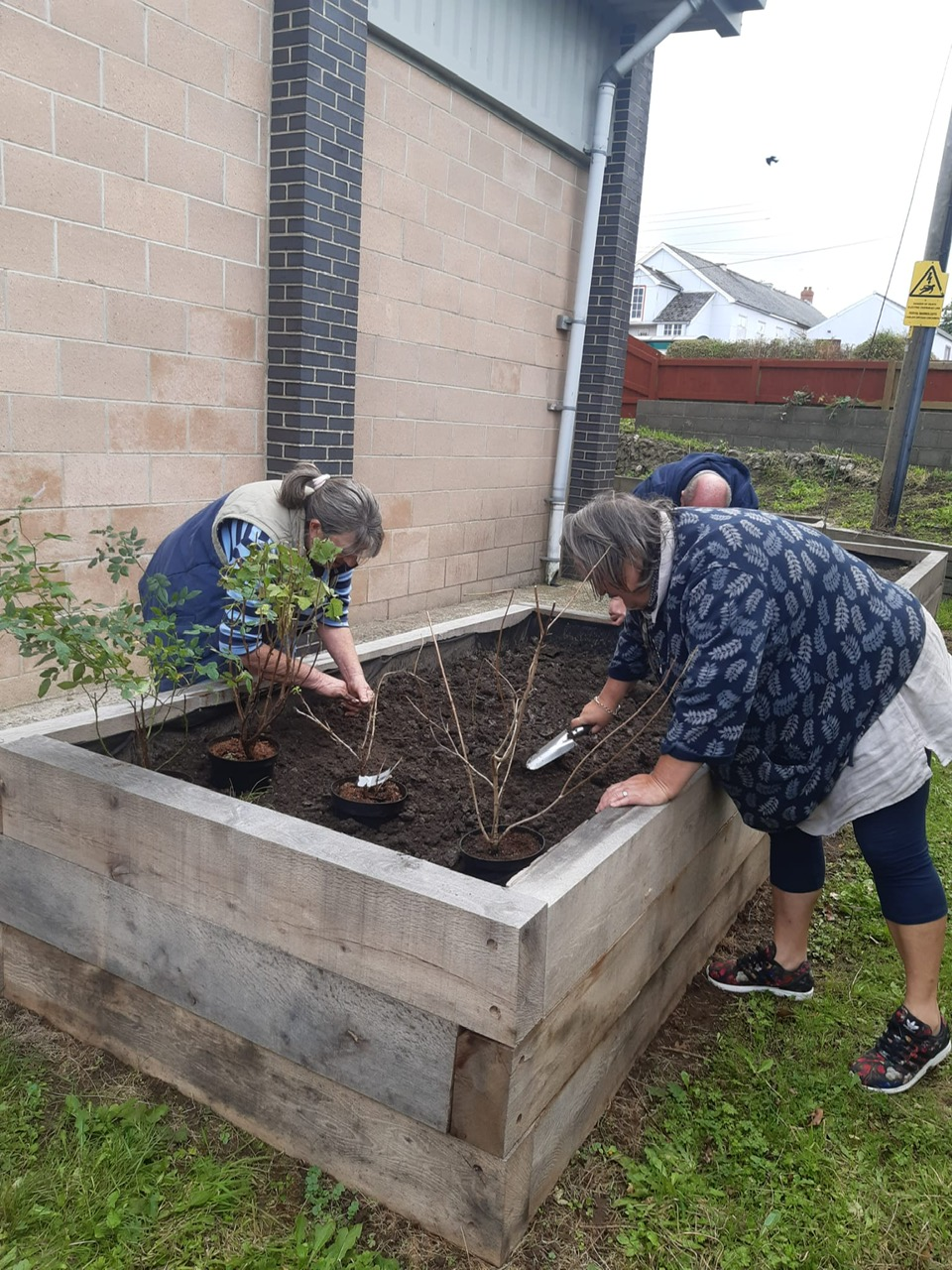 Dig in at our community garden!
